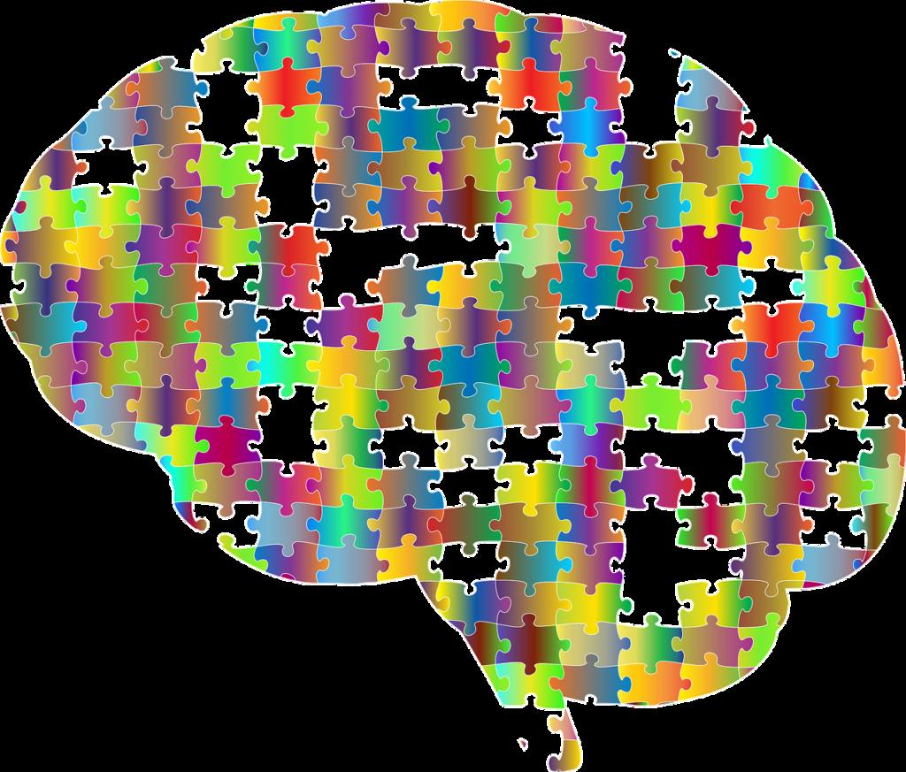 仕事ですぐに怒るのは脳の前頭前野との関わりが深い